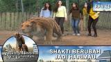 Download Video Shakti Jadi Harimau Demi Melindungi Temannya - 7 Maia Harimau New Generation Eps 64 Part 1 Music Terbaik